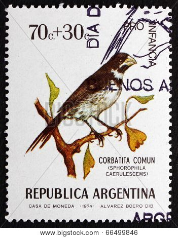 Postage Stamp Argentina 1974 Double-collared Seedeater, Bird