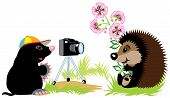 cartoon mole photographer taking photo of hedgehog,isolated image for little kids poster