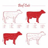 Scheme american cuts of beef - milk cow cuts elements red on white background poster