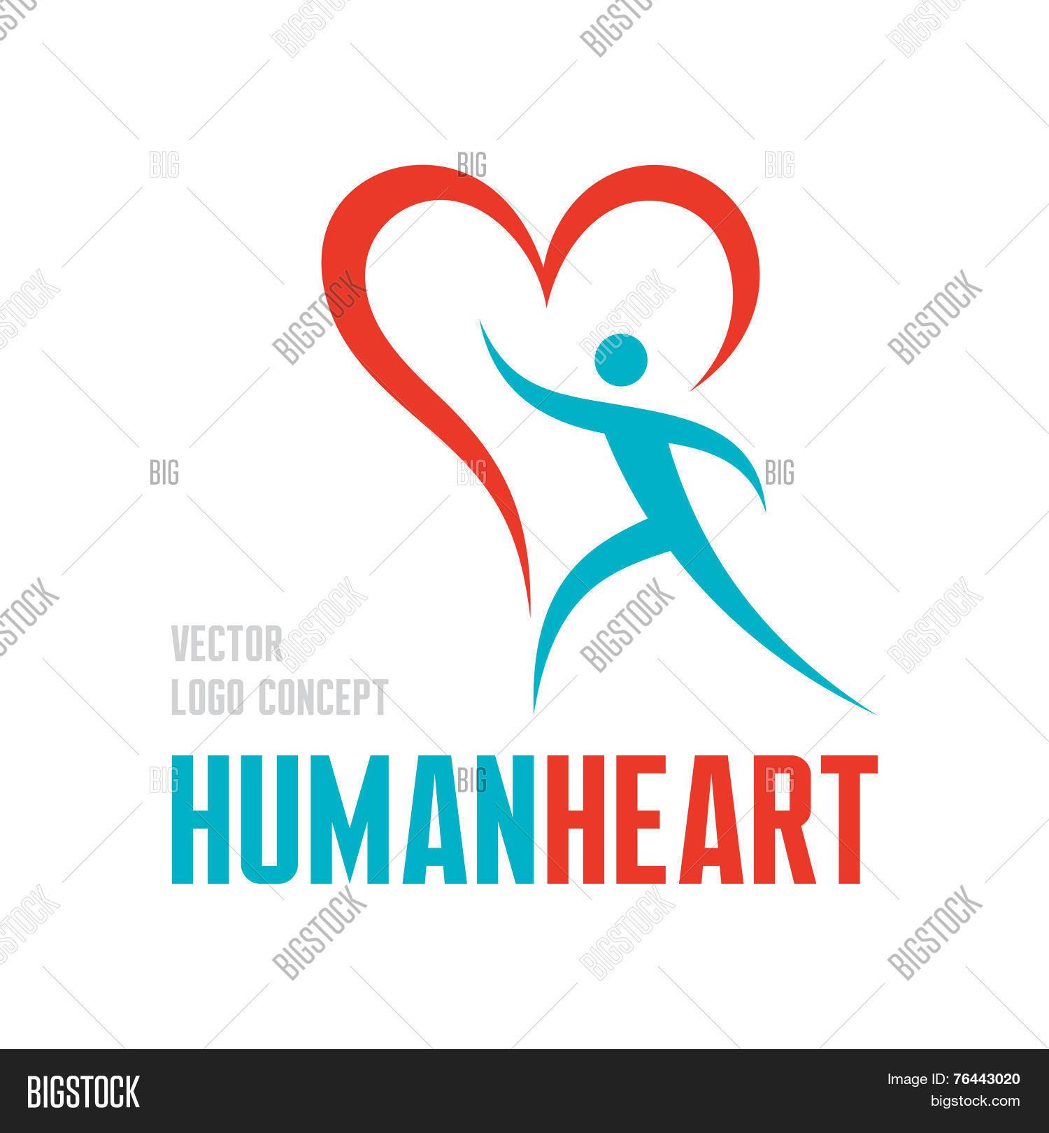 Human Heart Vector Vector Photo Free Trial Bigstock