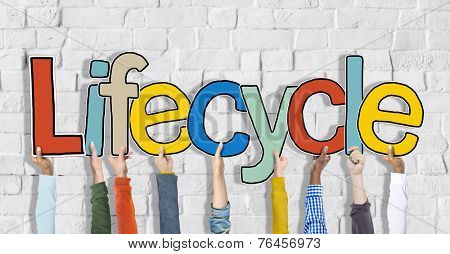 Lifecycle Arms Raised Colorful Multi Ethnic Live Concept