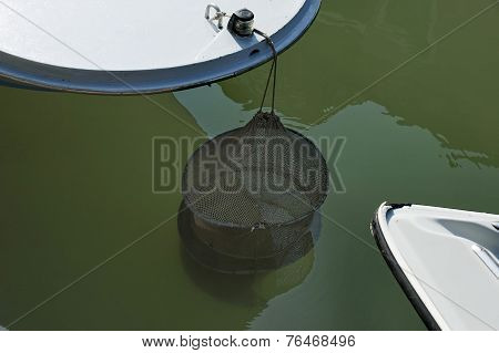 Fishing in street canals