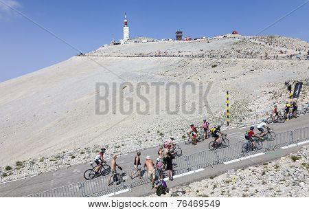 Amateur Cyclists On Mont Ventoux