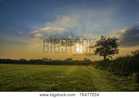 Sunset in farm fields at pengover green, cornwall, uk