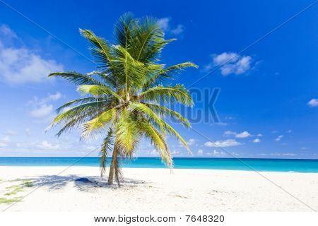 Bottom Bay in west Barbados