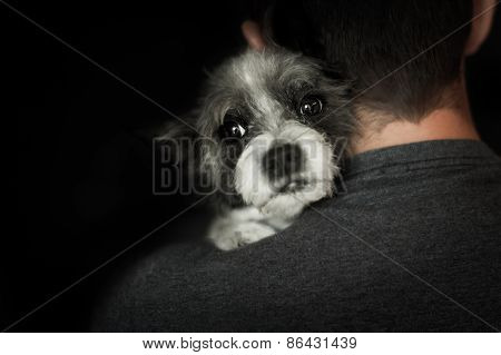 Dog And Owner Close Together