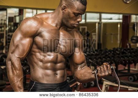Hunky muscular black bodybuilder working out in gym exercising biceps on machine. poster