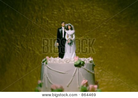 Wedding Couple 07