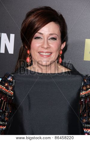 LOS ANGELES - MAR 25:  Patricia Heaton at the Mad Men Black & Red Gala at the Dorthy Chandler Pavillion on March 25, 2015 in Los Angeles, CA