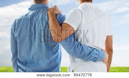 people, homosexuality, same-sex marriage, gay and love concept - close up of happy male gay couple or friends hugging from back over blue sky and grass background