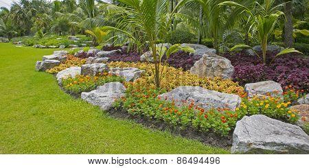 flower green pathway in the park outdoor