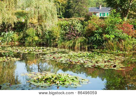 Monet's water lily pond made by Clode Monet himself - this scenery has been inspiration for a lot of his impressionistic artwork His house painted in pink and green his favourite colors is seen in the background. poster