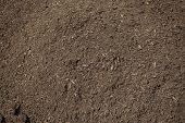 Close up view of rich, healthy compost dirt ready to be put into a garden and help grow healthy vegetables poster