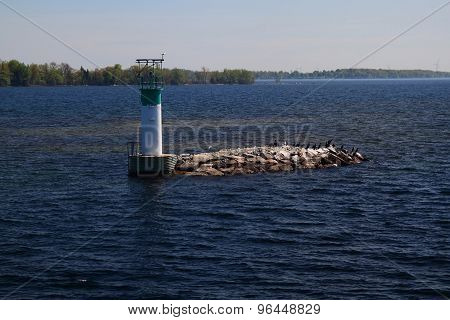 The Smallest From Thousand Islands