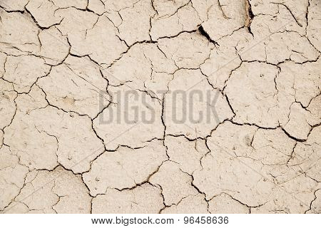 Parched Earth Background