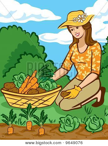 Growing Vegetables in a Home Garden