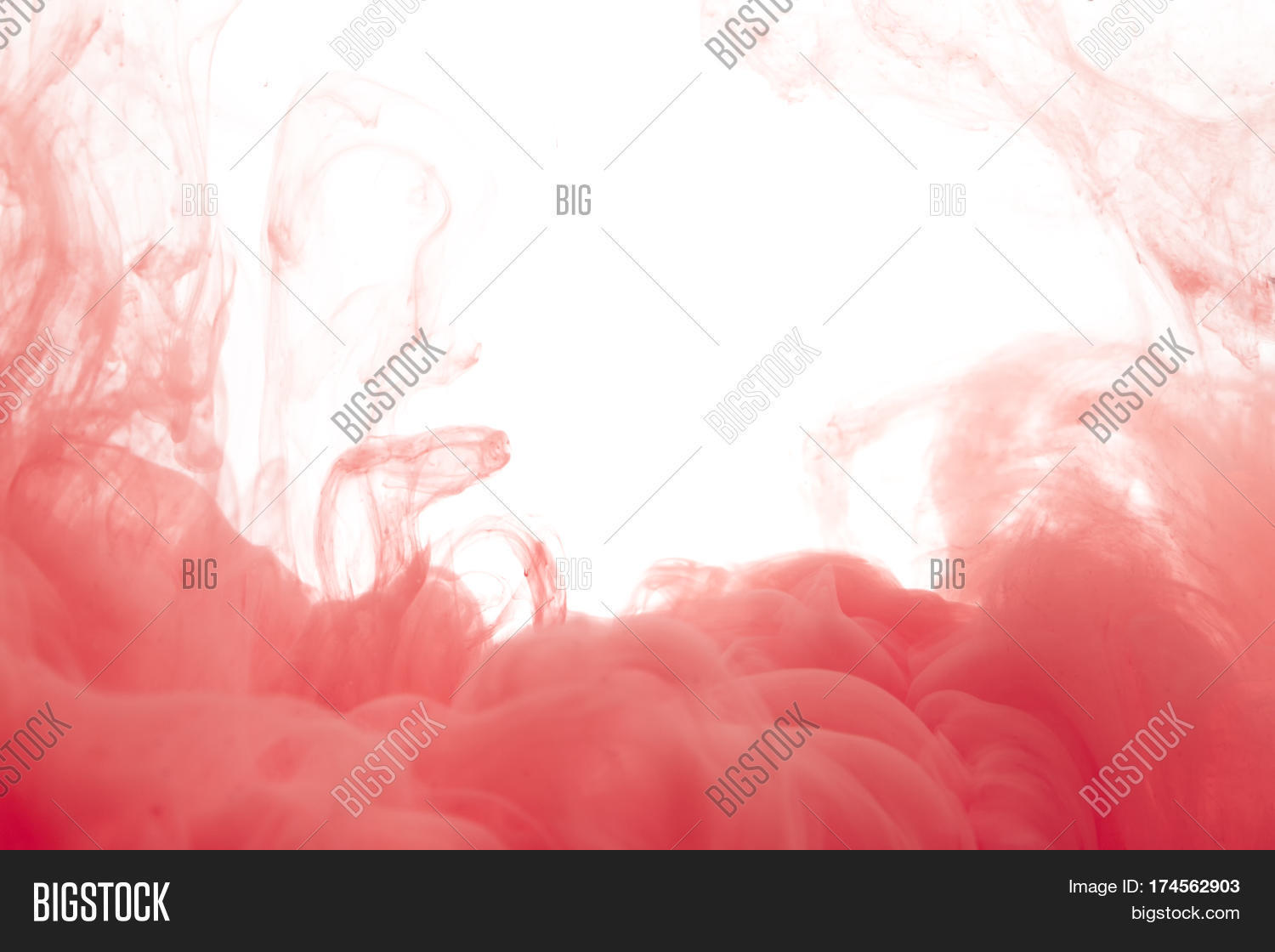 Colors Dropped Into Image & Photo (Free Trial) | Bigstock