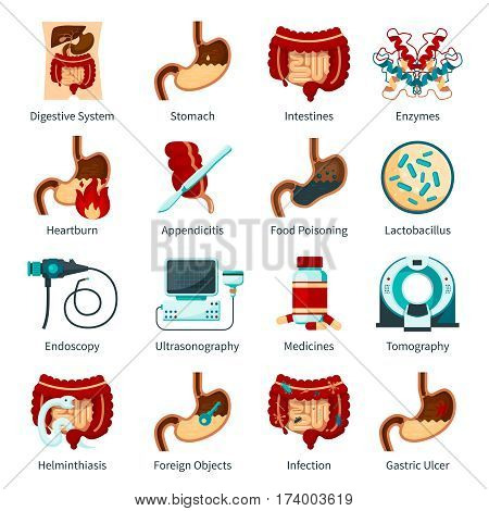 Colored and isolated digestive system flat icon set with stomach enzymes heartburn food poisoning and other descriptions vector illustration