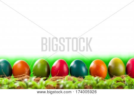 Easter egg decorating the bright day. can you use for greeting card