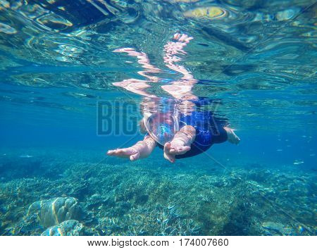 Woman swimming underwater in swimming costume and full-face mask. Blue sea banner template with text place. Underwater photo of female snorkel in modern gear. Snorkeling in coral reef with coral fish