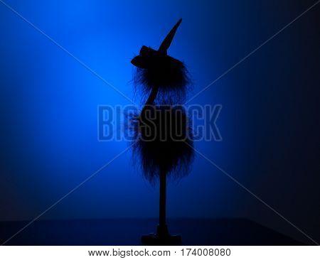 Silhouette of a bird in a hat. A dark silhouette in blue backlight
