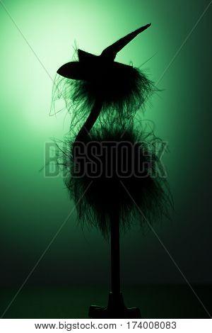 Silhouette of a bird in a hat. A dark silhouette in green backlight