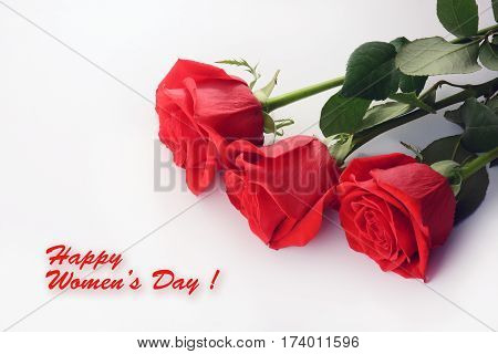 Red roses close up. Beautiful bouquet. Happy Women Day card