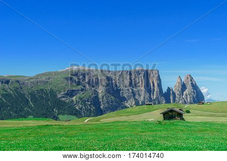 Panorama of dolomites mountains by Seiser Alp in South Tyrol