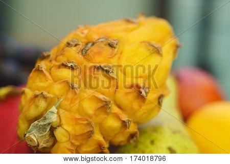 Pitahaya Close Up Kosobke Fruit