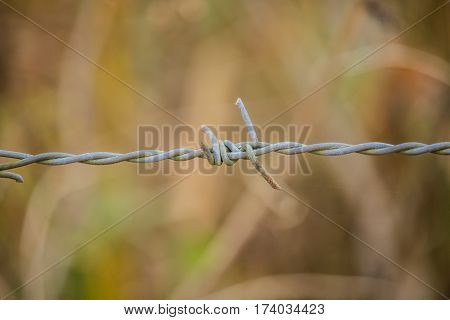 Close up of barbed wire with vintage look (fence)