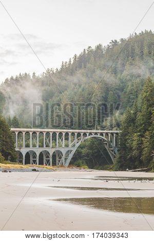 Gothic bridge in misty rainy weather on the Oregon Coast.