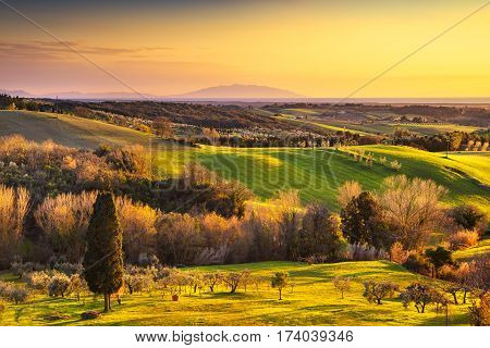 Maremma countryside sunrise landscape. Green fields and Elba island and sea on horizon. Tuscany Italy Europe.