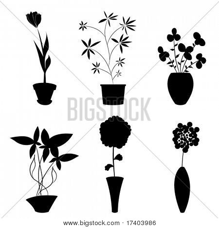 flowers and pot
