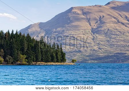 Pine trees and sunlit hills around Lake Wakatipu at Queenstown on the South Island of New Zealand