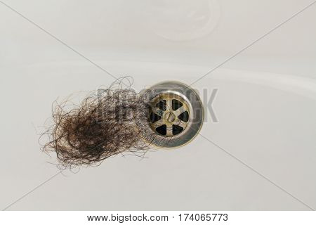 Close up lost hair in white sink.