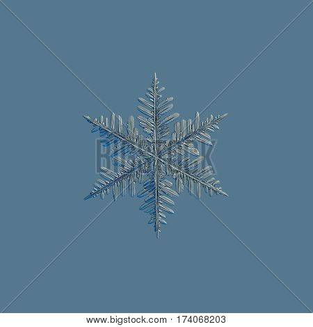 Snowflake isolated on uniform blue background. This is macro photo of real snow crystal: large stellar dendrite with massive arms and lots of side branches.