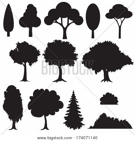 Set of various stylized trees in silhouette. vector illustration