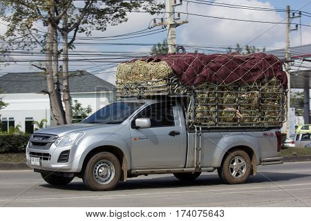 Private Isuzu Dmax Pickup Truck