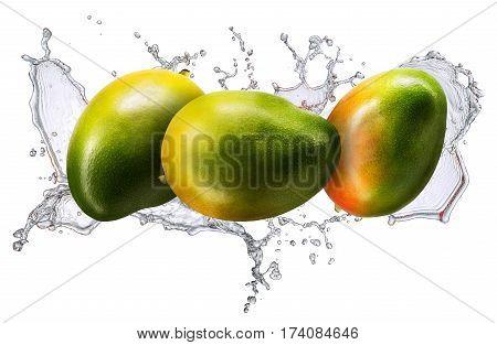 Water splash and fruits isolated on white backgroud. Fresh mango