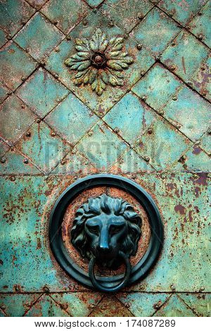 Decorative gilded lion head knob and knocker on old metal door with corrosion marks