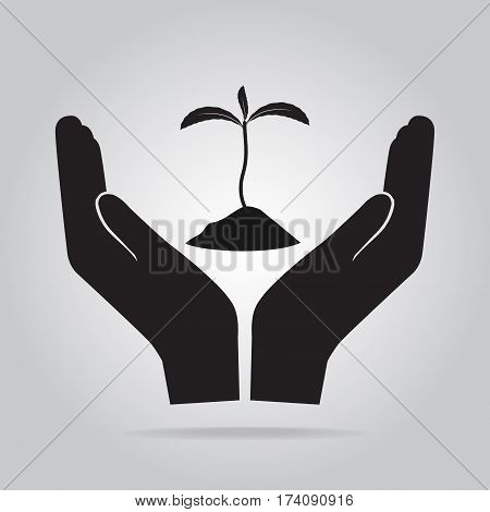 Plant in hand for cultivation icon Growth protect of nature concept
