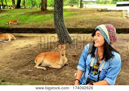 Traveler Thai Woman Sitting And Pose For Take Photo With Deers At Todai-ji Temple