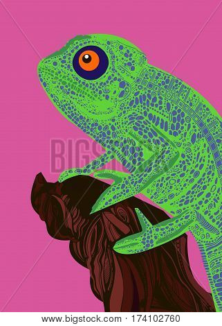 chameleon lizard drawing color graphics details branch