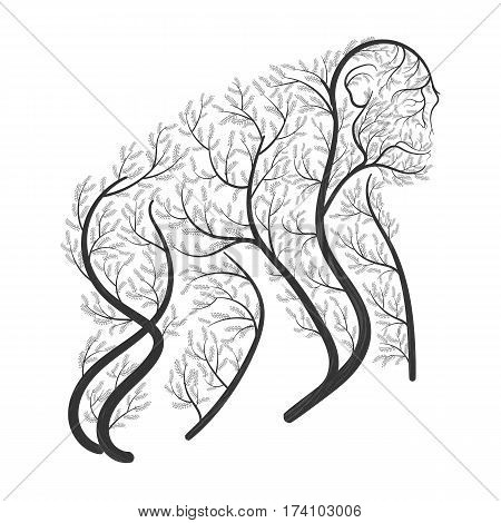 Chimpanzee stylized bushes on a white background for use as logos on cards in printing posters invitations web design and other purposes.