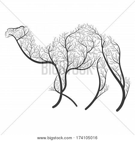 Dromedary stylized bushes on a white background for use as logos on cards in printing posters invitations web design and other purposes.