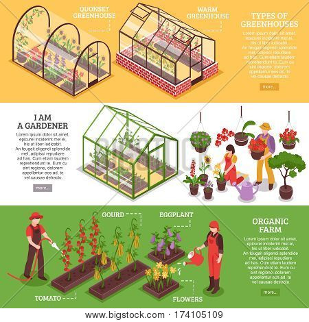 Three horizontal greenhouse banner set with I am gardener organic farm and types of greenhouses descriptions vector illustration