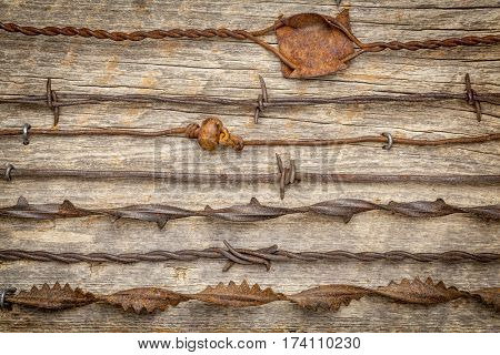 vintage rusty barbed wire collection against rustic barn wood