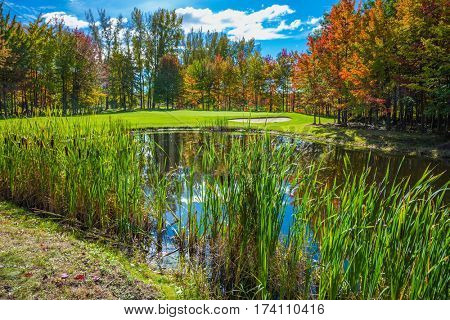 Concept of recreational tourism. Shining day in French Canada. Adorable pure pond overgrown with reeds. Autumn foliage reflected in clear water of the pond