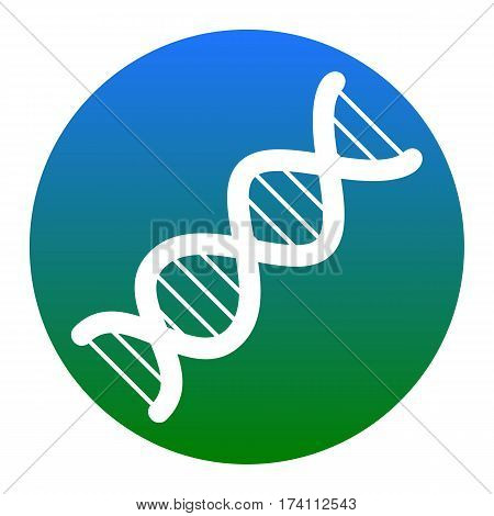 The DNA sign. Vector. White icon in bluish circle on white background. Isolated.