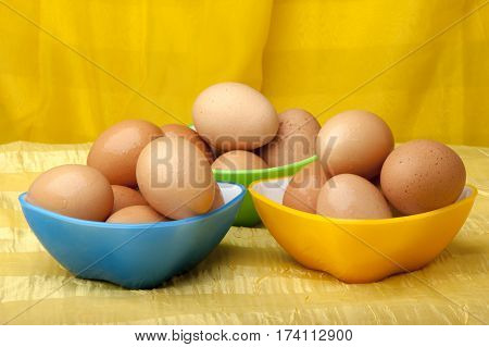 Eggs Ready To Color